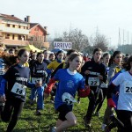 cross morandi